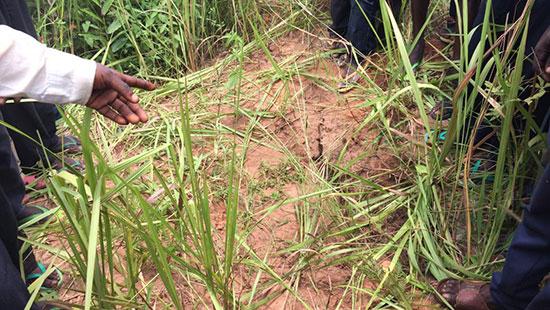 L'Onu a découvert 17 fosses communes dans le centre de la RDC