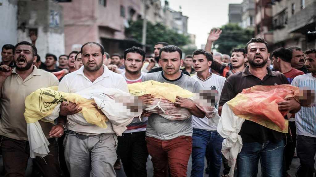 Syndicaliste belge: «Israël» tue des enfants palestiniens pour leurs organes