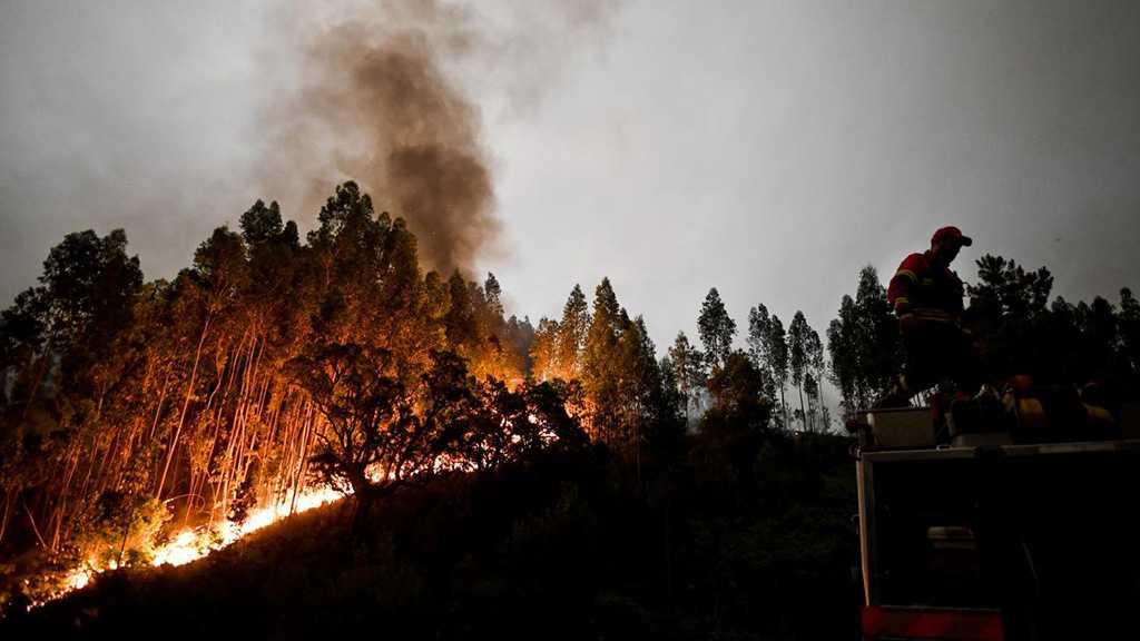 Californie : les incendies font toujours rage, au moins 59 victimes
