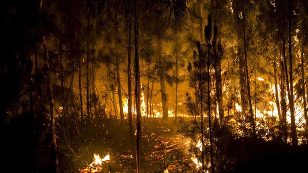 Incendie en Californie : le nombre de disparus dépasse 1.000 personnes, plus de 70 morts