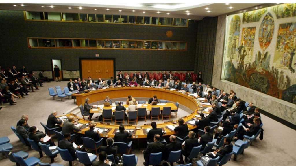 Washington exhorte le Conseil de sécurité de l'ONU à repousser une résolution sur le Yémen