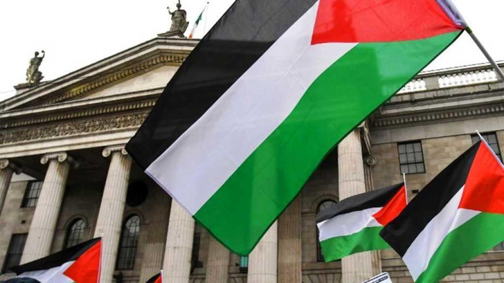 Irlande : le Sénat présente un projet de loi interdisant les produits des implantations de Cisjordanie occupée
