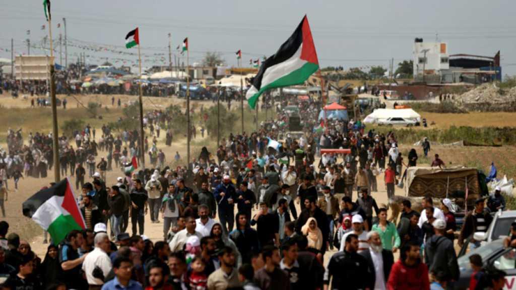 Gaza : affrontements à la frontière, un 4e Palestinien tué