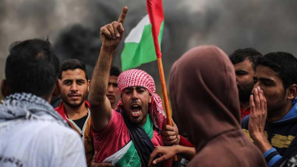 Gaza: Au moins 14 manifestants blessés dans des affrontements avec des soldats israéliens