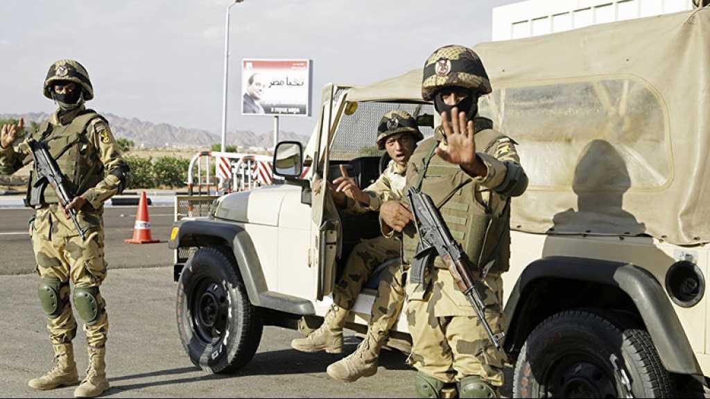 Deux Allemands soupçonnés d'avoir voulu rejoindre «Daech» arrêtés en Egypte