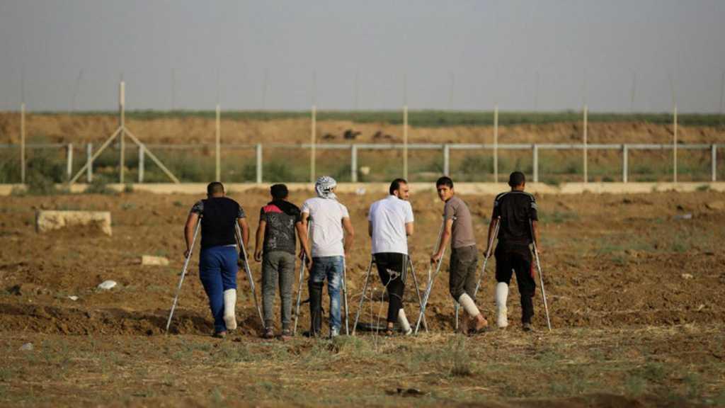 Une génération en béquilles : comment Israël a réprimé la Grande marche du retour
