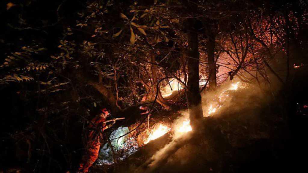 Chine : Un incendie de forêt tue 24 pompiers