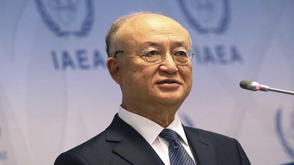L'AIEA demande à Ryad une «clause de sauvegarde» pour son premier réacteur nucléaire