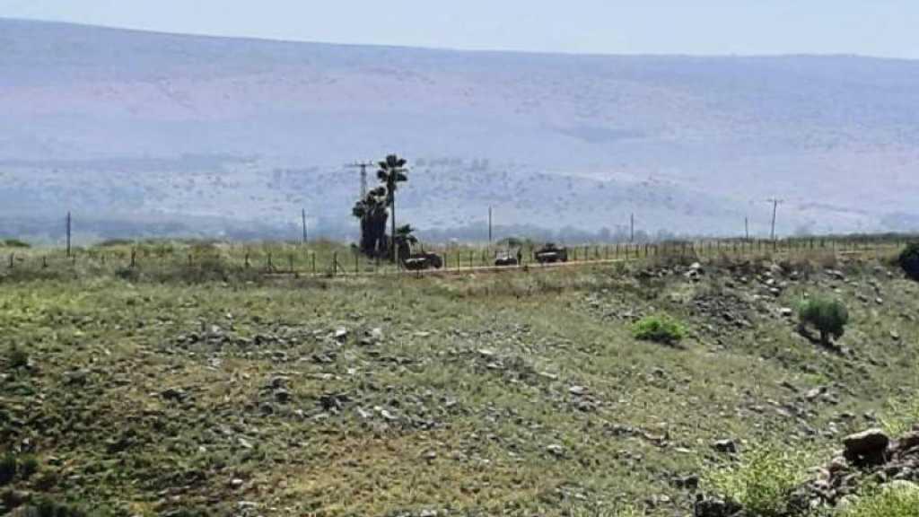 L'armée israélienne reprend les travaux d'une route militaire à la frontière avec le Liban