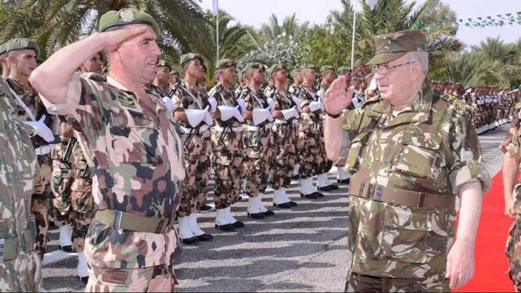 Algérie: «l'armée n'a pas d'autres choix que de pousser à l'élection présidentielle»