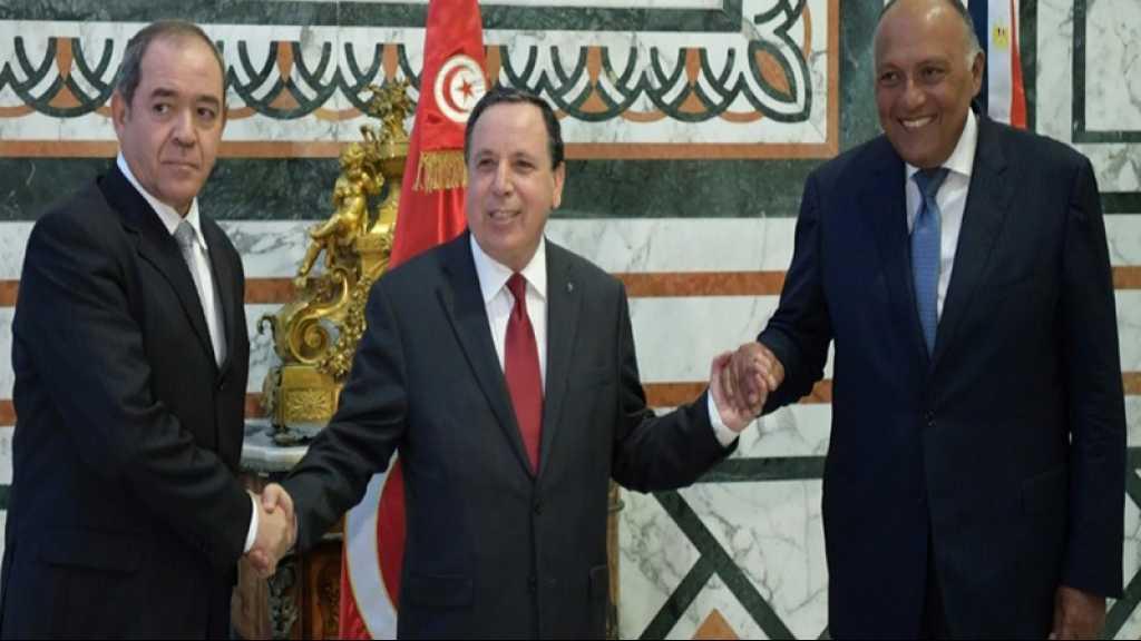 Libye: Tunis, Alger et Le Caire dénoncent les flux «continus» d'armes et de «terroristes»