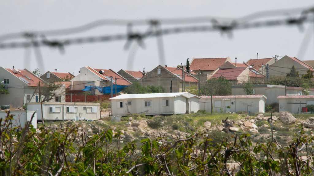 Par crainte des missiles de la Résistance, «Israël» plante des arbres à la frontière avec Gaza