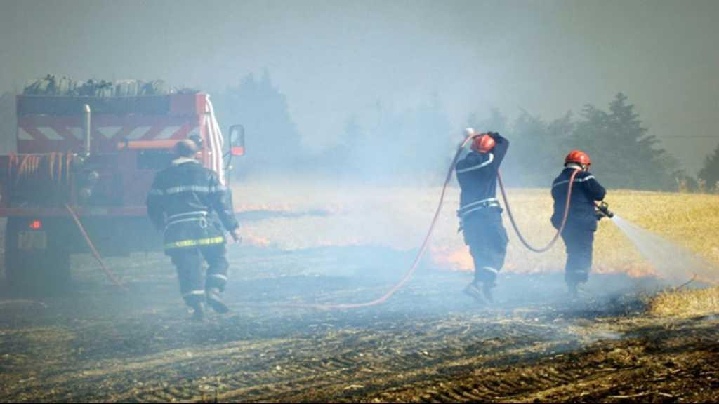 Canicule: des milliers d'hectares de cultures incendiés en France