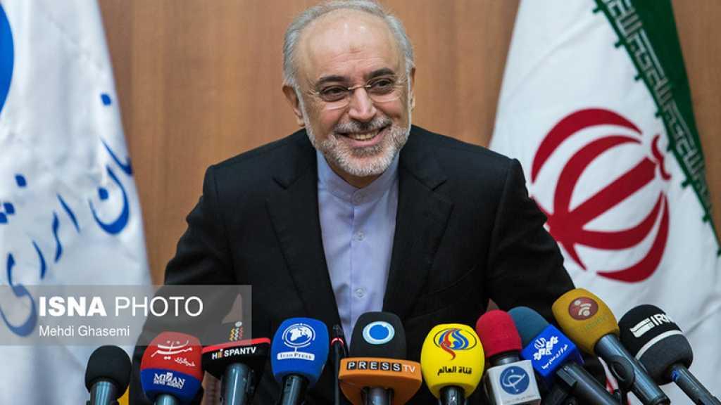 Salehi: Le projet de reconstruction du réacteur Arak avait bien progressé