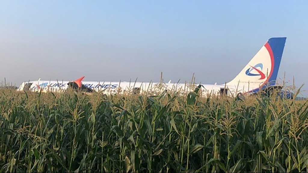 Russie: un Airbus atterrit d'urgence dans un champ de maïs, 23 blessés
