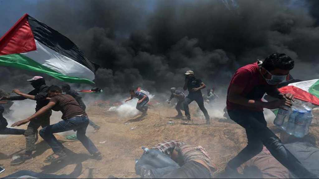 Gaza: des milliers de Palestiniens manifestent à la frontière, 63 blessés