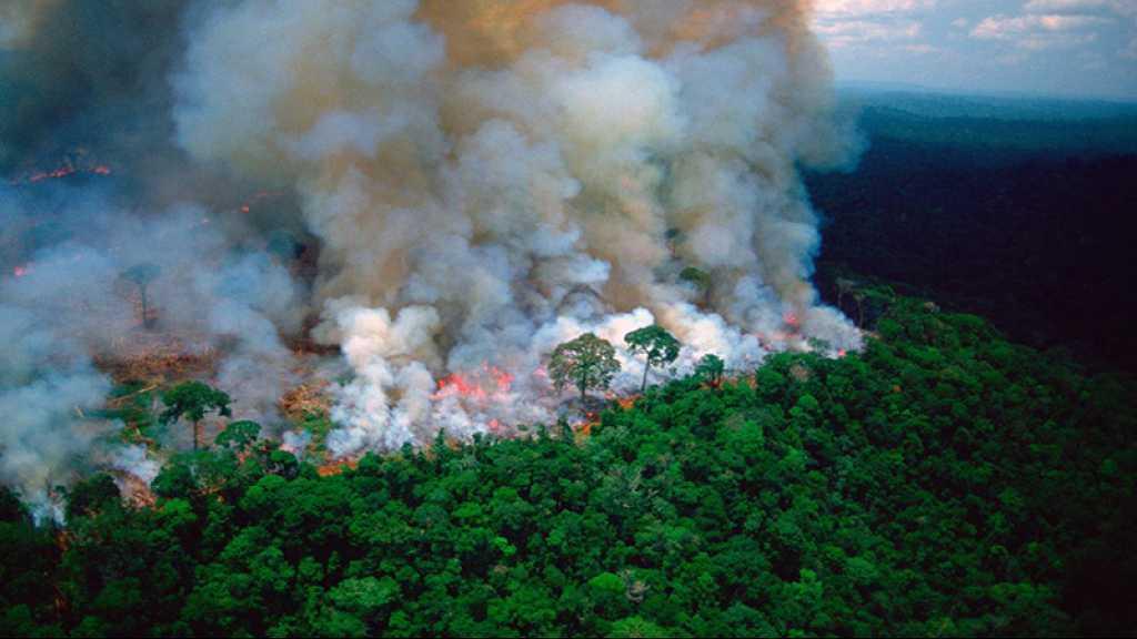 Feux en Amazonie: une «crise internationale», l'ONU «profondément préoccupé»