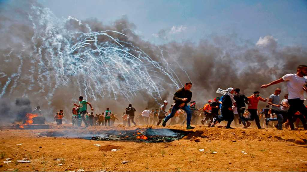Gaza: 6000 manifestants à la frontière, 54 blessés