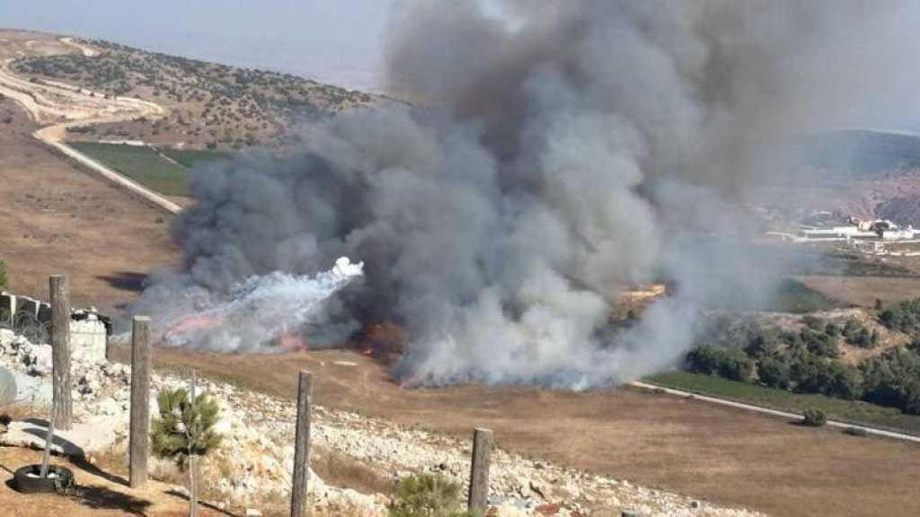 Après l'opération du Hezbollah, les colons dans le village occupé de Salha peinent à revenir à la vie normale