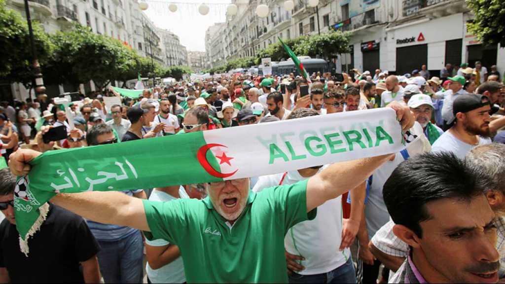 Algérie: une instance prône une élection «dans les plus brefs délais»