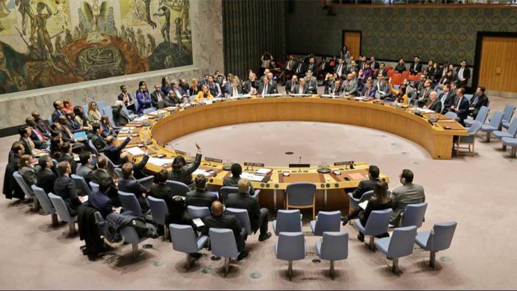 Idleb: veto russo-chinois à l'ONU à une résolution imposant un cessez-le-feu