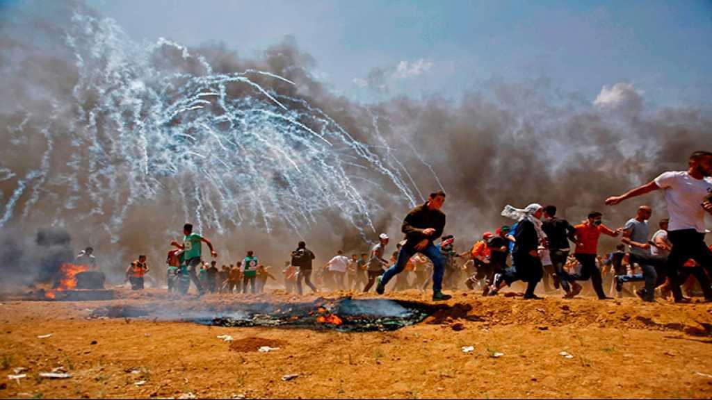Gaza: plus de 7.000 manifestants à la frontière, un martyr