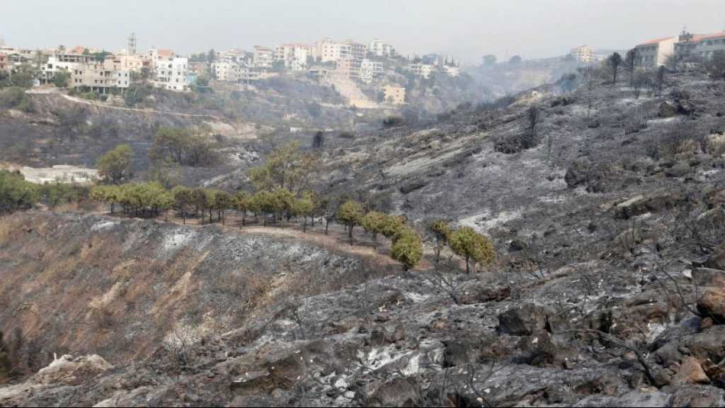 Liban: la majorité des incendies maîtrisés, quelques foyers «limités» persistent