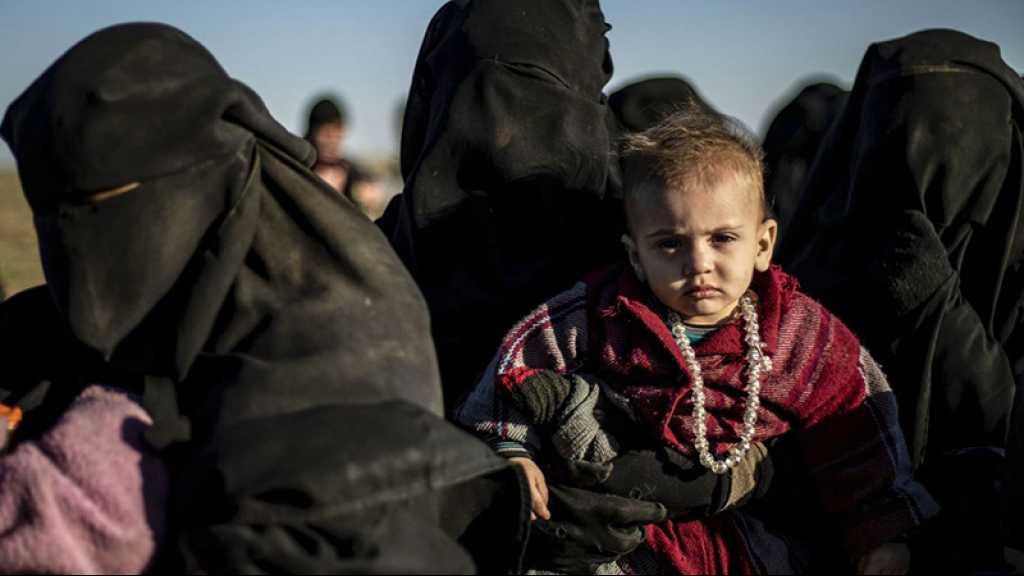Des chercheurs étudient la liste de plus de 100.000 enfants liés à «Daech»