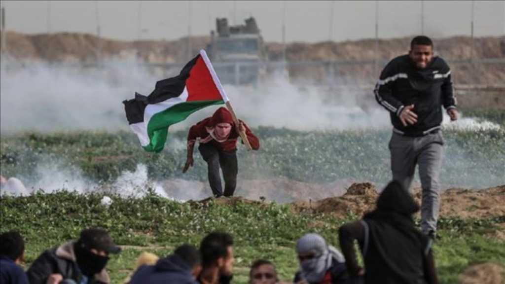 Gaza: plus de 5.000 manifestants palestiniens à la frontière