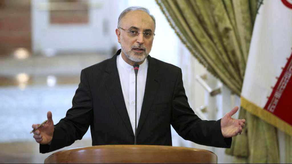 Nucléaire: l'Iran affirme que les travaux de modernisation du réacteur à eau lourde d'Arak progressent