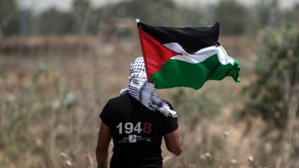 Belgique: vote d'une résolution qui demande de reconnaître l'État de Palestine