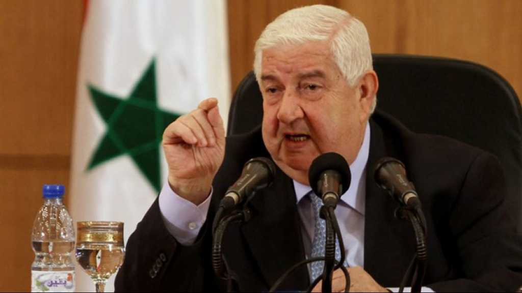 «La Turquie est l'un des principaux soutiens du terrorisme dans la région», selon Damas