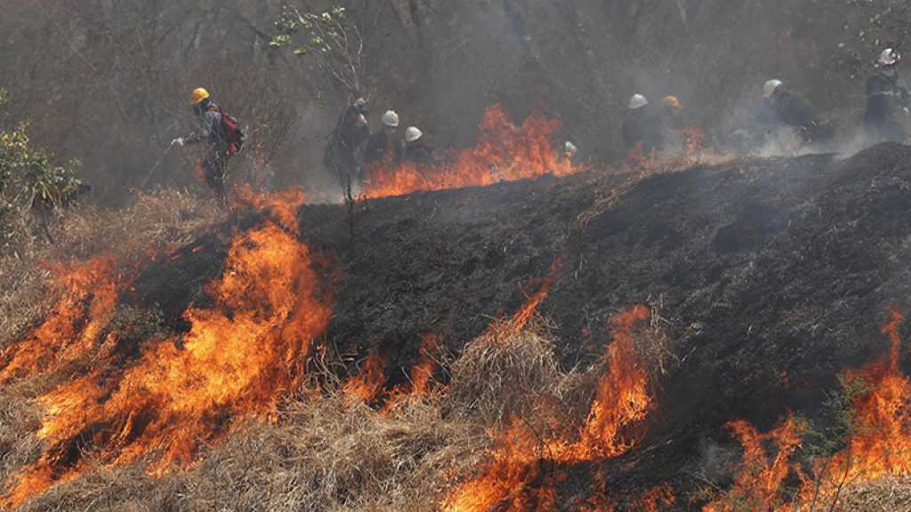 Incendies: la Bolivie se décrète en état de catastrophe nationale