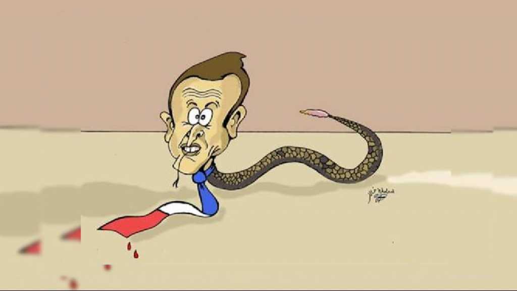 Une ONG française à Nouakchott annule le contrat d'un caricaturiste pour «offense à Macron»