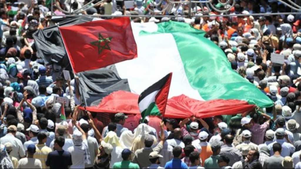 Maroc: plus de 200 scientifiques et universitaires condamnent la normalisation avec «Israël»