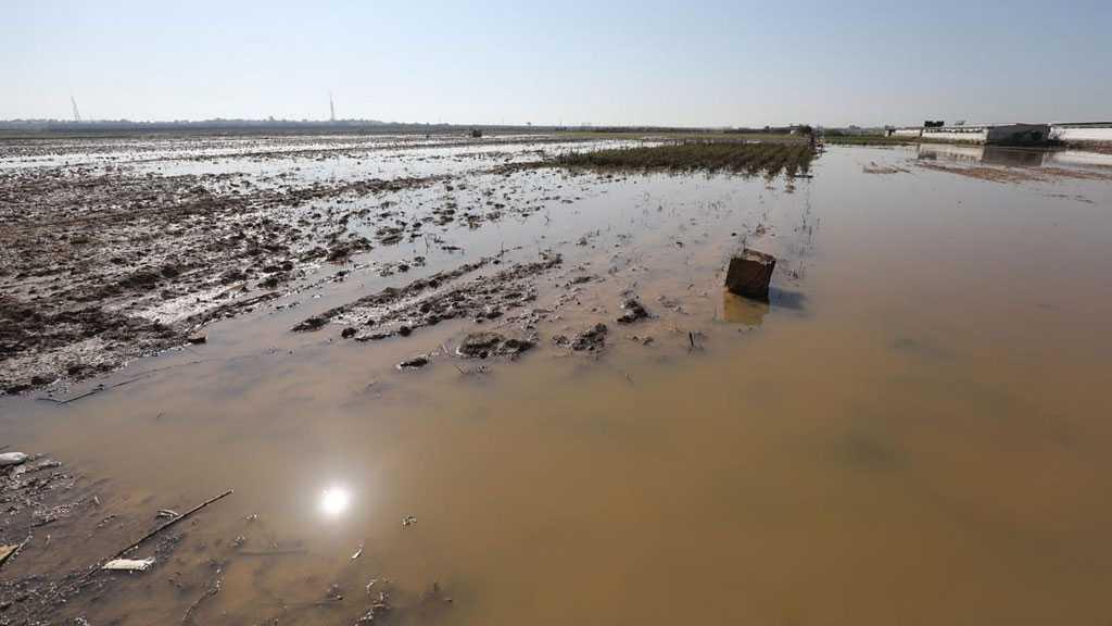 «Israël» inonde et endommage intentionnellement des centaines de dunums de terres à Gaza
