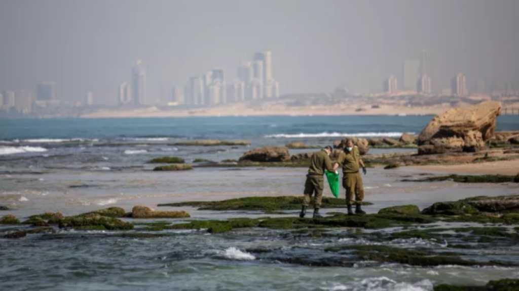 Marée noire: «Israël» interdit la vente de tous les produits de la mer Méditerranée