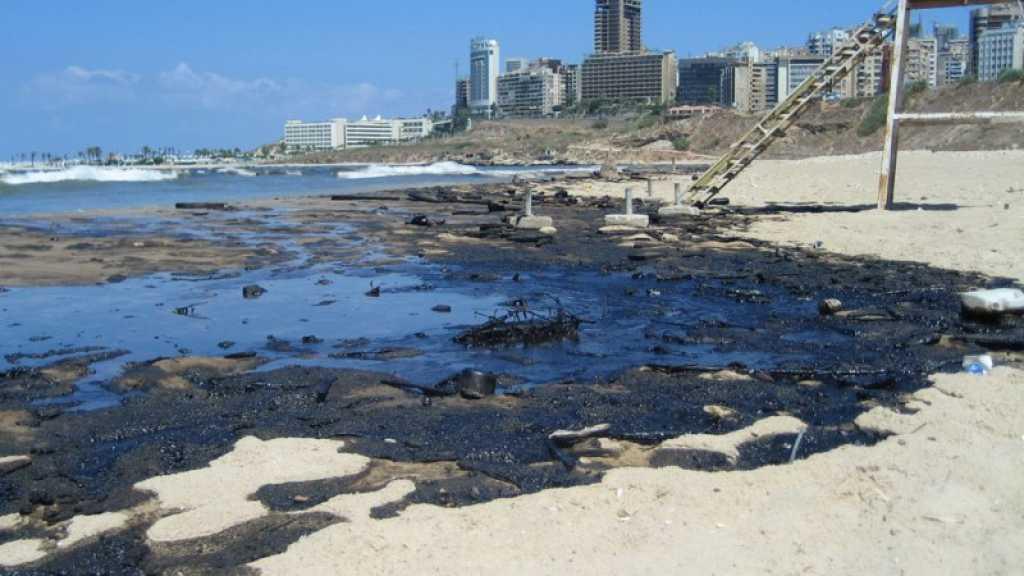 Marée noire: Berry appelle à «porter plainte contre Israël, responsable d'un crime environnemental»