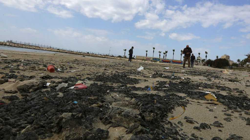 Marée noire en Méditerranée: Greenpeace fustige les accusations d'«Israël» contre l'Iran