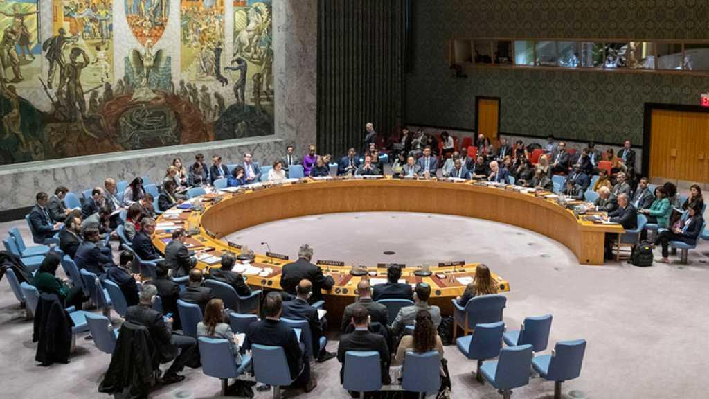 Nouvelle réunion jeudi du Conseil de sécurité de l'Onu sur le Tigré