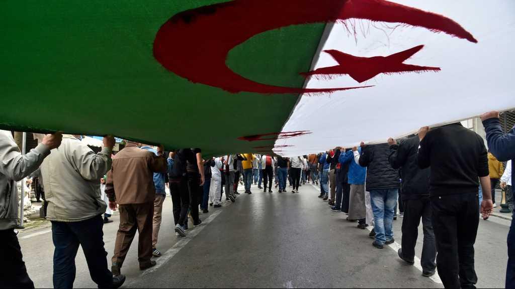 Algérie: la France «a répandu l'analphabétisme», selon un conseiller du président