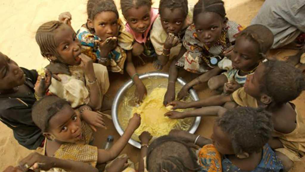 Afrique: 17 milliards de dollars pour améliorer la sécurité alimentaire