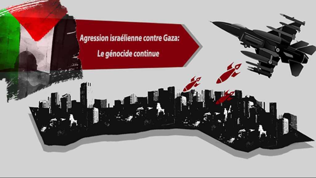 Agression israélienne contre Gaza: le génocide continue