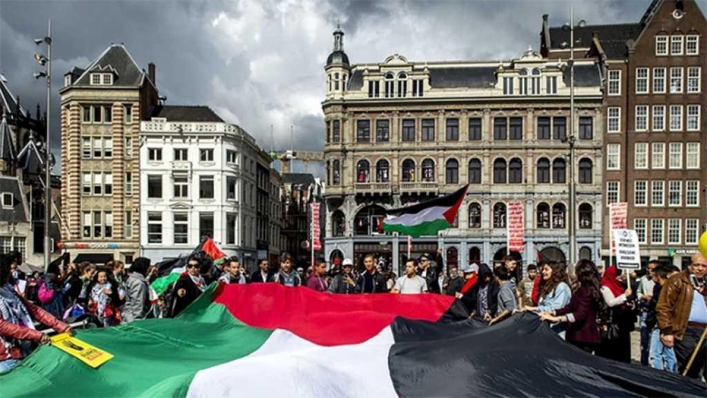 Pays-Bas: des universitaires appellent à un boycott d'«Israël» après l'agression contre Gaza