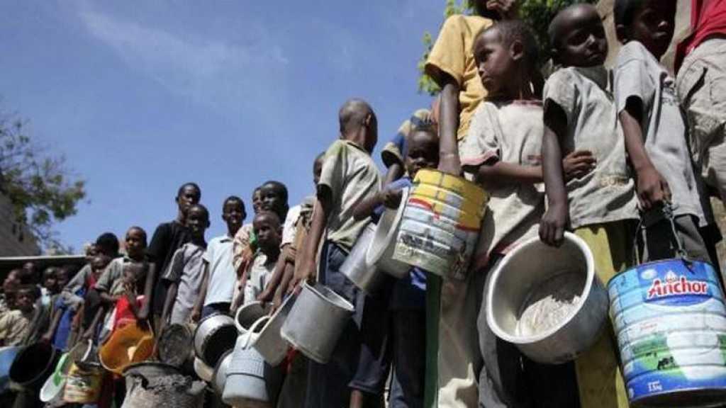 Un demi-milliard d'Africains sous la menace de l'insécurité alimentaire