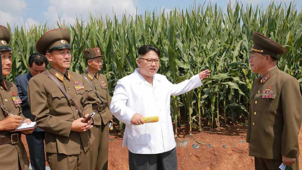 Corée du Nord: Kim Jong Un reconnait une «situation alimentaire tendue»