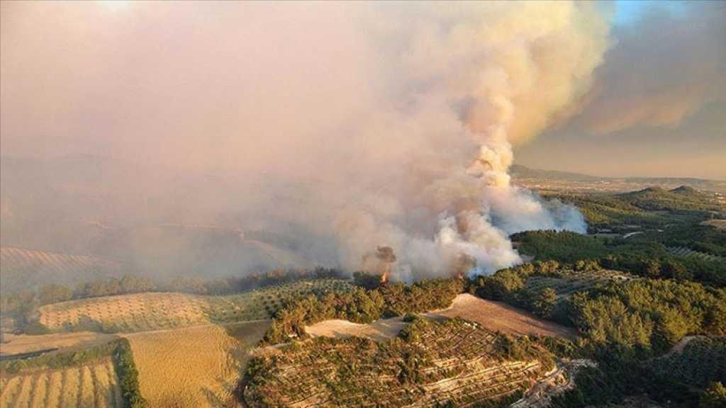 Turquie: une centrale thermique menacée par les incendies, les évacuations se poursuivent
