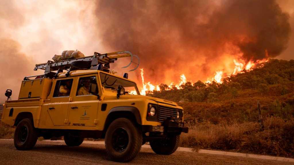 Incendies: plus de 700 hectares brûlés au Maroc, derniers foyers actifs en Algérie