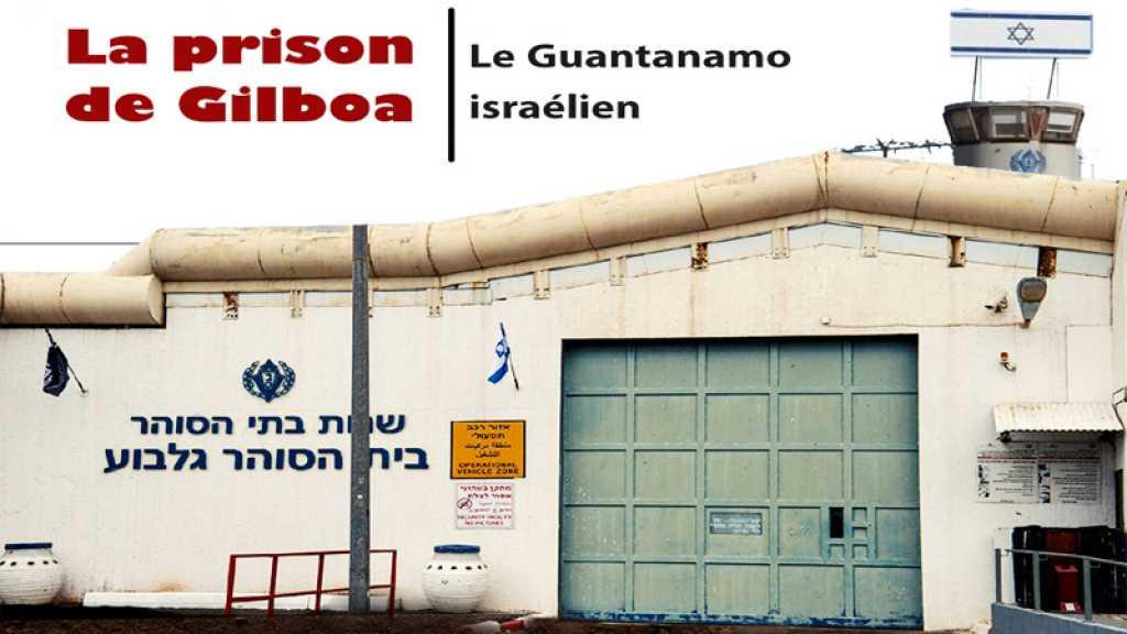 La prison de Gilboa, le Guantanamo israélien