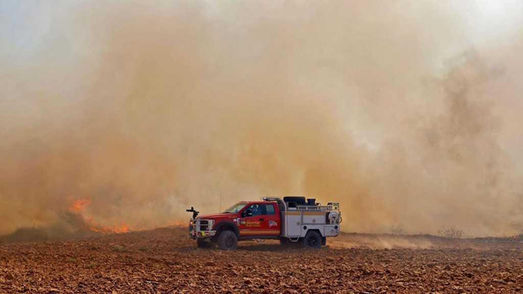 L'armée de l'occupation frappe Gaza en riposte aux lancers de ballons incendiaires